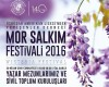 Mor Salkım Festivali