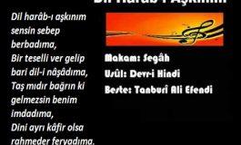 DİL HARAB-I AŞKINIM, SENSİN SEBEP BERBADIMA-2 - Cemil Biçer yazdı.