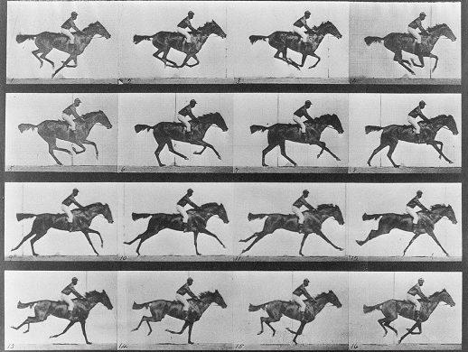 Kronofotoğraflar; 'Duchamp'da Devinimin Statik Halleri', Eadweard MUYBIRDGE'in 187. Doğumgünü Anısına – Özlem Kalkan Erenus yazdı…