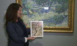 """Van Gogh'un """"Zeytin Ağaçları"""" tablosundan çekirge çıktı."""