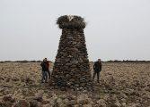 'Diyarbakırlı Çoban'ın 'Taştan Kuleler'i çağdaş sanat eserlerine taş çıkartıyor!