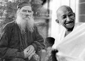 'Tolstoy Gandhi Mektuplaşmaları' bu kitapta!