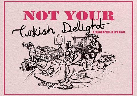"""""""NOT YOUR TURKISH DELIGHT"""" albümü çıktı!"""