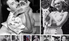 Her başarılı sanatçının arkasında bir 'kedi' vardır!