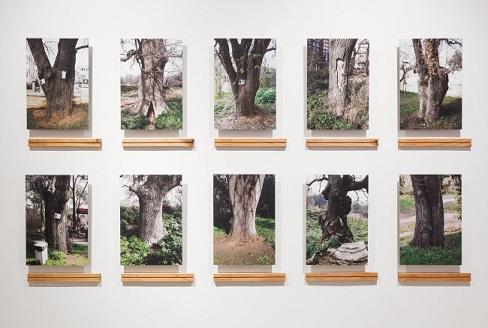 Evrim Altuğ'dan '16. İstanbul Bienali' değerlendirmesi…