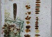 Gürel Art Space Resim Sergisi - Sevim Arslan 'Flora'nın Öyküleri