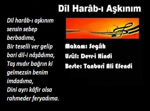 Photo of DİL HARAB-I AŞKINIM, SENSİN SEBEP BERBADIMA-2 – Cemil Biçer yazdı.