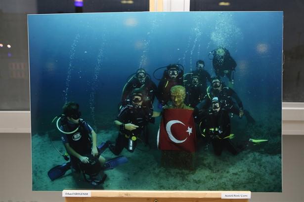 Photo of Su altı yaşamının kareleri!