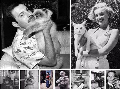 Photo of Her başarılı sanatçının arkasında bir 'kedi' vardır!