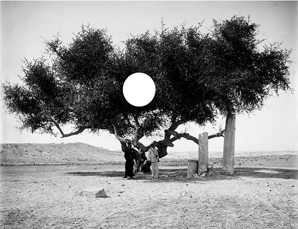 """Photo of """"Orada Her Kimse"""" sergisi SALT Galata'da açıldı"""