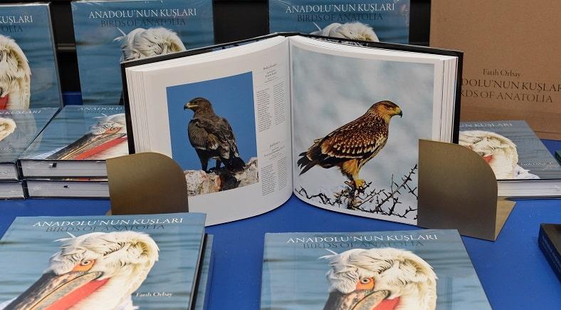 Photo of 'Anadolu'nun Kuşları'