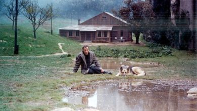Photo of FilmBox Arthouse'la Andrei Tarkovsky Günleri